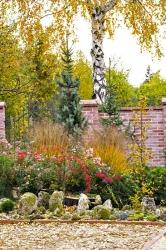Kouzlo této skupiny tkví vrozmanitosti použitých rostlin. Růže přináší něžné květy, trávy sjavorem se loučí hrstmi zlata arumělky, zatímco zeravy ajedle působí svěže jako najaře.