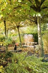 Komu by se chtělo sedět doma, když se může uvelebit nalavičce pod zlatou střechou zplatanů? Doprovodný šepot trav apadajícího listí působí namysl unavenou zpráce téměř terapeuticky.
