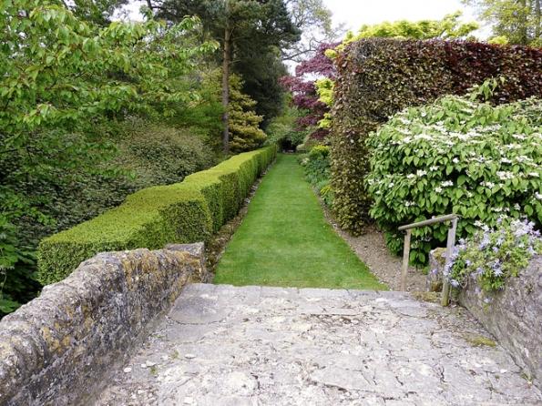 Nebojte se na pozemku kombinovat opadavé istálezelené ploty. Výsledek bude oto zajímavější.