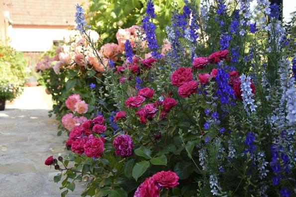 Jako vkvětinovém opojení by si mohli připadat všichni, kteří tuto zahradu skvětinovými záhony navštíví. Kromě klasických trvalek tu během léta kvetou anglické růže iletničky.