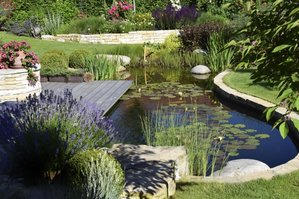 Kde je voda, tam to žije. Okrasné jezírko skoi kapry tvoří dominantní prvek celé zahrady. Jeho architektonické ztvárnění vsobě snoubí městský ipřírodní styl, což této zahradě sedne doslova namíru.