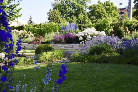 Rukopis paní architektky se pozná naprvní pohled, ráda se totiž při své tvorbě inspiruje anglickým zahradním stylem. Typickým prvkem jsou například růže aletničky se schopností samovýsevu.