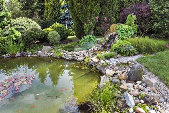 Jezírko oobjemu 12 kubických metrů je lemované kameny sosádkou okrasných karasů amalým vodopádem, který napájí voda zfiltračního systému.