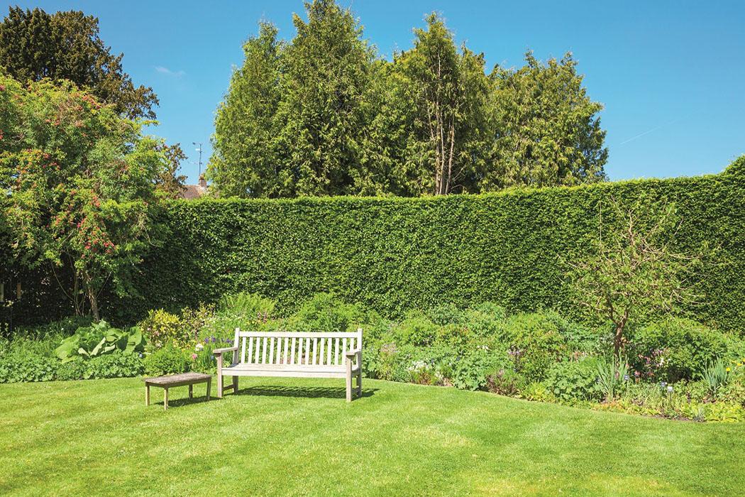 Jak založit dokonalý trávník