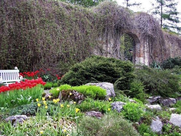 Na jaře skalku rozzáří rozkvetlé cibuloviny, tmavé jehličnany tvoří barevný kontrast.