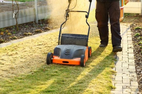 Krajina se již trochu zazelenala a po zimním odpočinku opět přicházejí povinnosti na zahradě. Naši péči potřebuje zejména trávník, aby stále byl tím krásným zeleným kobercem pro odpočinek i dětské hry.