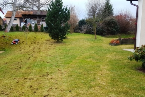 Organické zbytky na trávníku po prováděné vertikutaci (Zdroj: HECHT)