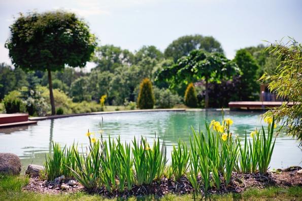 Voda je bezesporu symbolem bohatství aprosperity. Vpřírodních zahradách má důležitý úkol. Láká ksobě všechno živé audržuje zahradu krásnou azdravou.