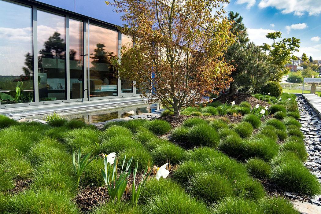 Střešní zahrady mají zelenou