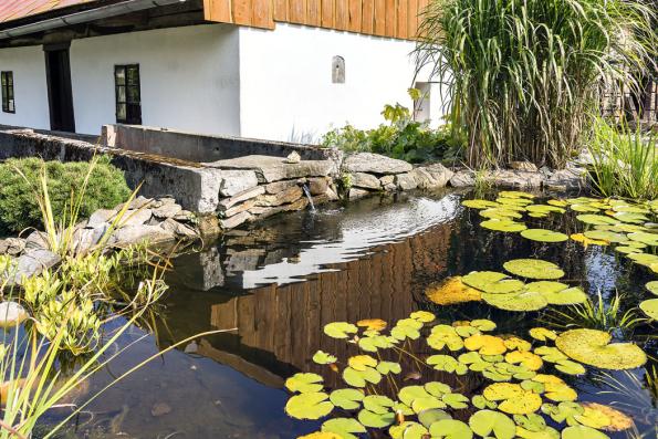 Zahrada je pěkně upravená, v dáli je slyšet zurčení vody, mlýnské kolo poslušně šlape a rozlehlé jezírko se třpytí čistotou.