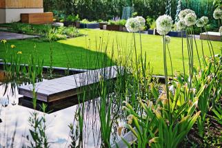 Přírodní jezero nemusí vypadat jako malý rybník nebo lesní tůňka. Naprvní pohled ho často nerozeznáte odbazénu. Nanevelkou asi 400 m2 zahradu uprostřed pražské zástavby se zde vešel isaunovací domek.