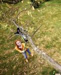 Teleskopické nůžky na větve
