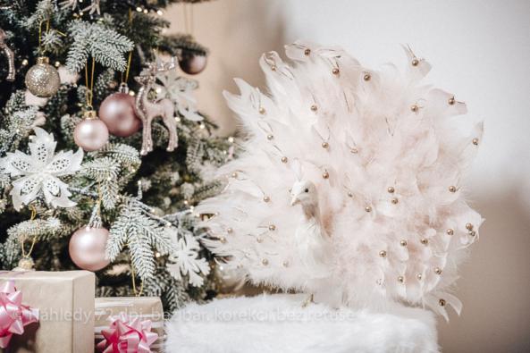 VMountfieldu najdete pod jednou střechou přes 500 druhů vánočních ozdob a dekorací pro interiér i exteriér: od LED světelných řetězů a figurek, přes vánoční ozdoby, adventní věnce, svíčky a svícny, až po plyšáky a spoustu dekorací ze skla, porcelánu, dřeva, kovu či přírodních materiálů.  Široká nabídka je rozčleněna do 4 sladěných stylů: Tradiční Vánoce vbarvách červené, zlaté a stříbrné, Vánoce ze Severu, kde převažuje hnědá a přírodní materiály, Vánoční pohádka laděná do růžova a Mrazivé Vánoce v modrých tónech.
