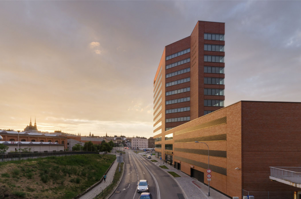 Mezi nejlepší zařadila porota brněnský Polyfunkční objekt Dorn (Atelier RAW, 2016), největší budovu se zavěšeným cihelným pláštěm v České republice.