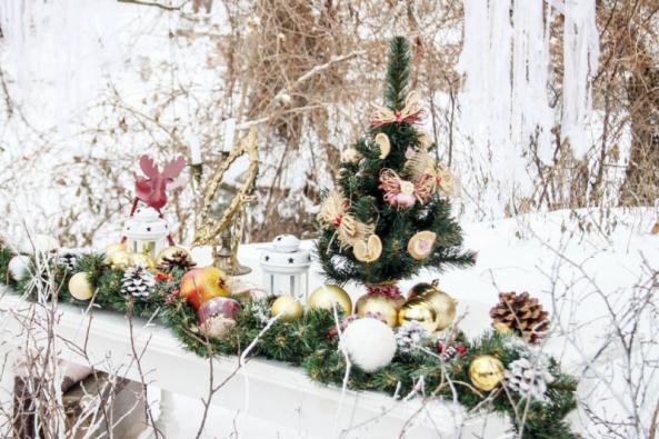 Zapomeňte na tvrdou práci a udělejte si z prosince měsíc zahradního potěšení a přípravy na mrazy: ozdobte si stromek, vyrobte krmítko, posbírejte drobné větvičky a plody na dekorace ...a uvařte si k tomu zázvorový čaj.