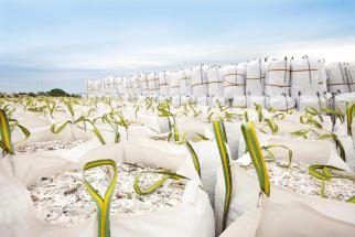 Odpadní PVC před zpracováním na regranulát (Zdroj: VEKA)
