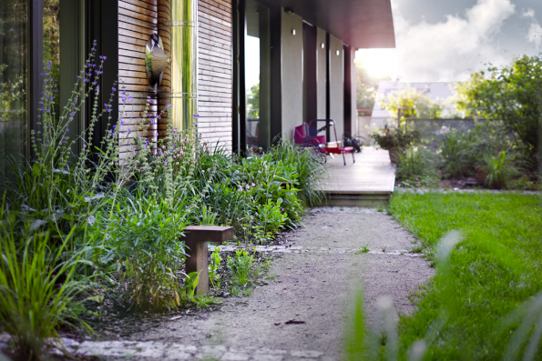 Vyšší zeleň přivedená až koknům přirozeně propojuje rodinný dům se zahradou. Různorodé druhy trvalek zajišťují pocelý rok zajímavé výhledy zpokojů.
