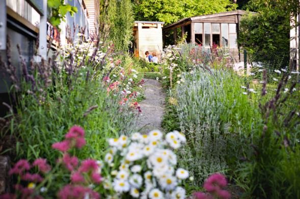 Lesní zahradu vDubči můžete vidět ivseriálu Ferdinandovy zahrady, který vysílá ČT každou sobotu.