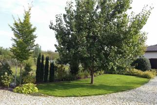 Ovocné stromy si nemusíte odpustit ani v městské zahradě
