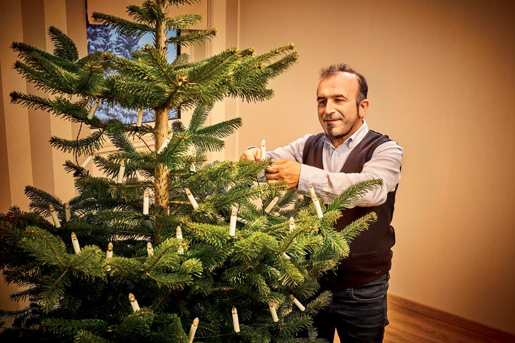 Pětkrát ano pro živý vánoční stromek