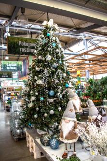 Vánoční stromek v Hornbachu (Zdroj: Hornbach)