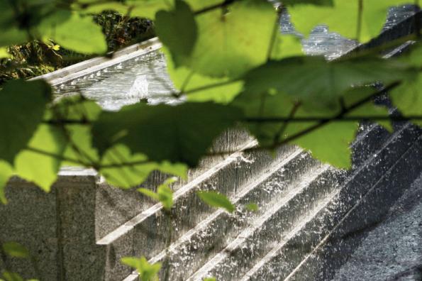 Dvouúrovňový vodní prvek s přepadem vody na vodní stěně má i praktickou funkci – zlepšuje mikroklima zahrady. Zvyšuje vlhkost vzduchu a spolu s rostlinami snižuje teplotu vzduchu, což obyvatelé zahrady ocení zvláště v horkých letních dnech, kdy zahrada vytváří příjemnou oázu proti rozpáleným pražským ulicím