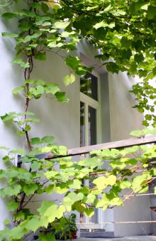 Réva se dostává až k samotným bytům, kde téměř doslovně ťuká na dveře a zve obyvatele do zahrady