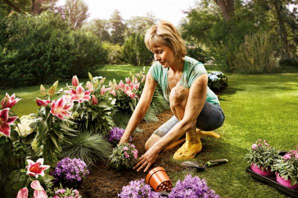 Úprava zahrady (Zdroj: Hornbach)