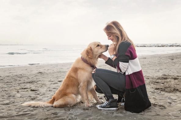 Společnost Hornbach přichází na trh snovinkou, která potěší jak majitele psů a koček, tak především jejich čtyřnohé kamarády. Řetězec projektových marketů rozšiřuje svou stávající nabídku zvířecího krmiva o vlastní prémiovou značku FINEVO. Mokré i suché krmení vpraktickém balení představuje pro zvíře plnohodnotnou stravu zkvalitních přísad. (Zdroj: Hornbach)