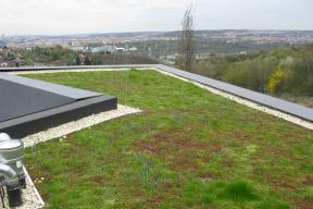 Vítězná Zelená střecha roku 2018, Villa Sophia (foto ACRE)
