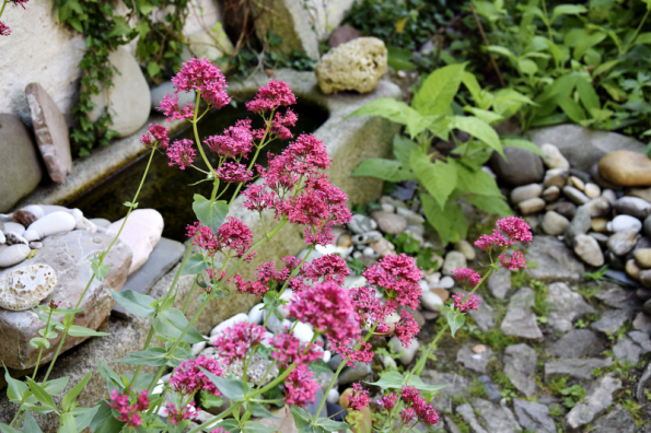 Do malé zahrady bohatě stačí i ptačí koupadlo ve starém žulovém korytu