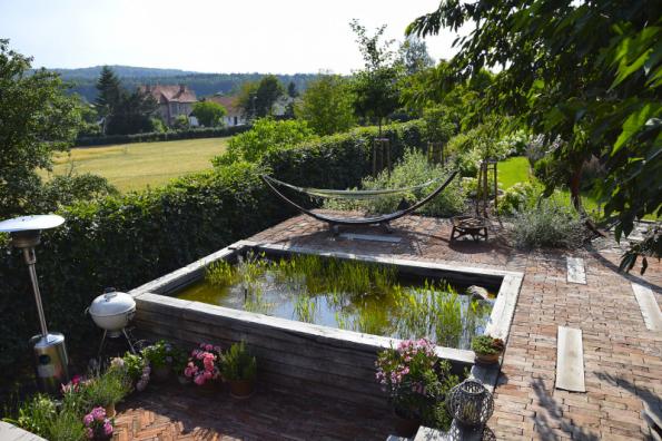 Vodu příjemně oživují vodní rostliny. Je ovšem nutné vybrat vhodný druh a správně rostliny vysadit