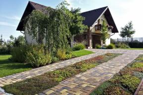 Zahradní sukulenty a mateřídoušky porostou dobře i v úzkých pruzích v příjezdové cestě