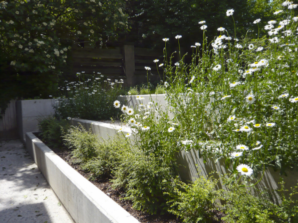 Někdy je mnohem efektivnější se vzdát klasického svahování a rovnou postavit zídku třeba z pohledového betonu