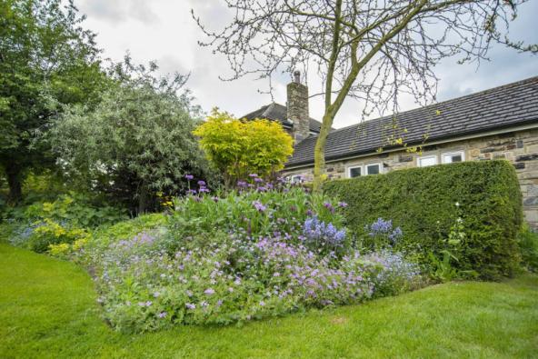 Zahradní designérka Carol Carthy si na periferii rodného města Leedsu vybudovala zahradu snů