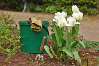 Pro lehké práce na zahradě, u kterých se potřebujete chránit jen před menšími oděrkami a špínou, vám bohatě postačí textilní nebo kombinované rukavice