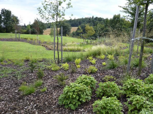 Zahrada by měla být sama o sobě schopná vodu zadržovat. Pomoci jí můžeme vhodnou skladbou rostlin, mulčováním, terénními úpravami a zachycováním dešťové vody