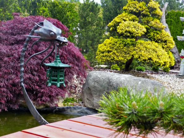 Po rekonstrukci zahrady v minulém roce přibyla celá řada stromů a bonsají a v partii u jezírka se tyčí nový mostek s kovaným japonským drakem