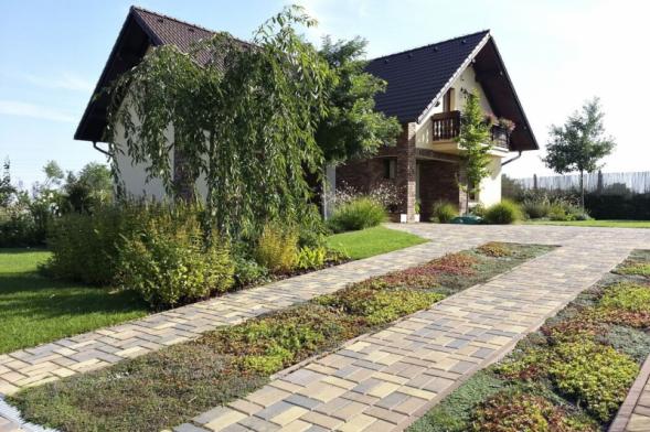 Příjezdovou cestu mohou doplnit vegetační pásy, které zmenší a hlavně ozelení povrch dlažby. Pro výsadbu budou dobrou volbou hlavně zahradní sukulenty