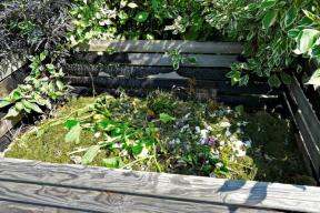 Do zahradního kompostu můžete přidat jemně nadrcenou dřevní hmotu