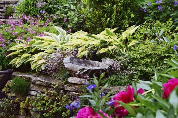 Zkombinovat rostliny tak, aby vytvořily zajímavou mozaiku barev a struktur, není tak úplně snadné. V celoročně zajímavé zahradě by se měly doplňovat rostliny s hrubou i jemnou texturou. Stejně důležité jsou ale také vlastnosti použitých materiálů