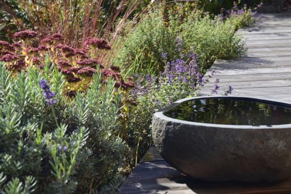 Podzimní barevné představení na zahradě nebude určitě nikoho nudit. Zvláště poblíž terasy vsaďte na podzimní trvalky, okrasné trávy a dřeviny, které přebarvují listy do různých odstínů