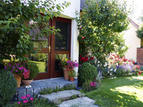 Vchod do domu lemují dvě meruňky, které na jaře krásně kvetou, dále stříhané buxusy a květiny v nádobách. Vše doplňuje přírodní dlažba a kameny