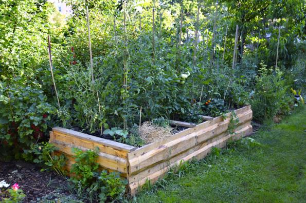 S výškou to nemusíte vždy přehánět. Pokud plánujete výsadbu vzrůstnější zeleniny, výška okolo 50 cm bohatě postačí